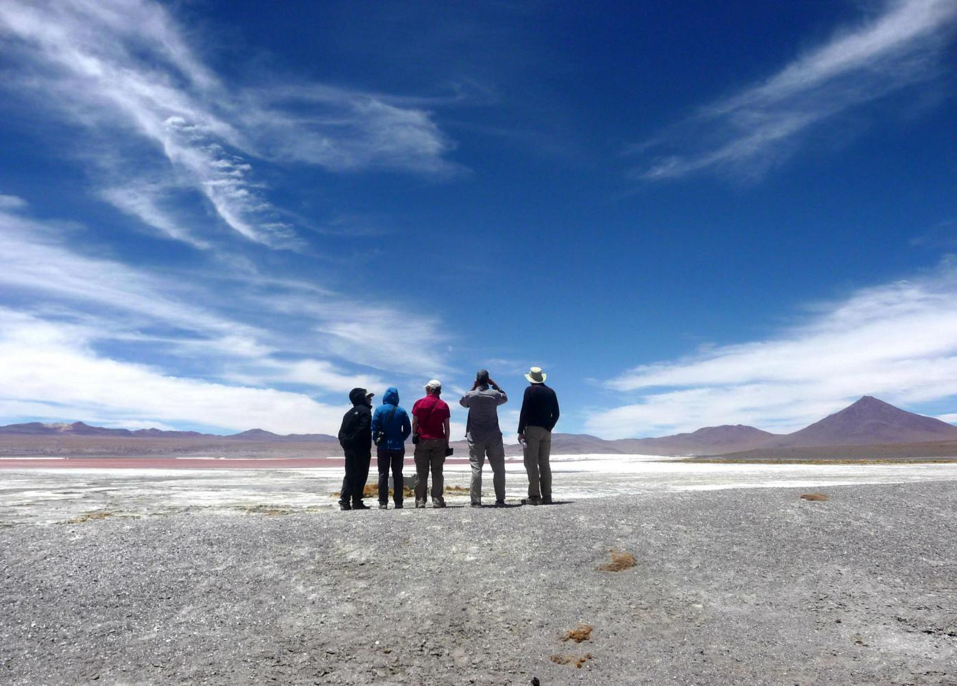 Laguna colorada lipez bolivie