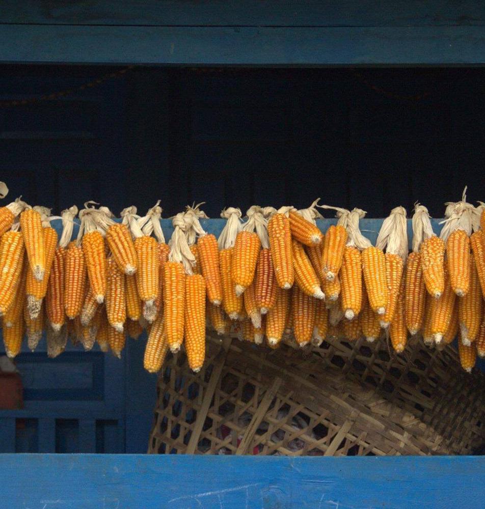 Solu Katmandou