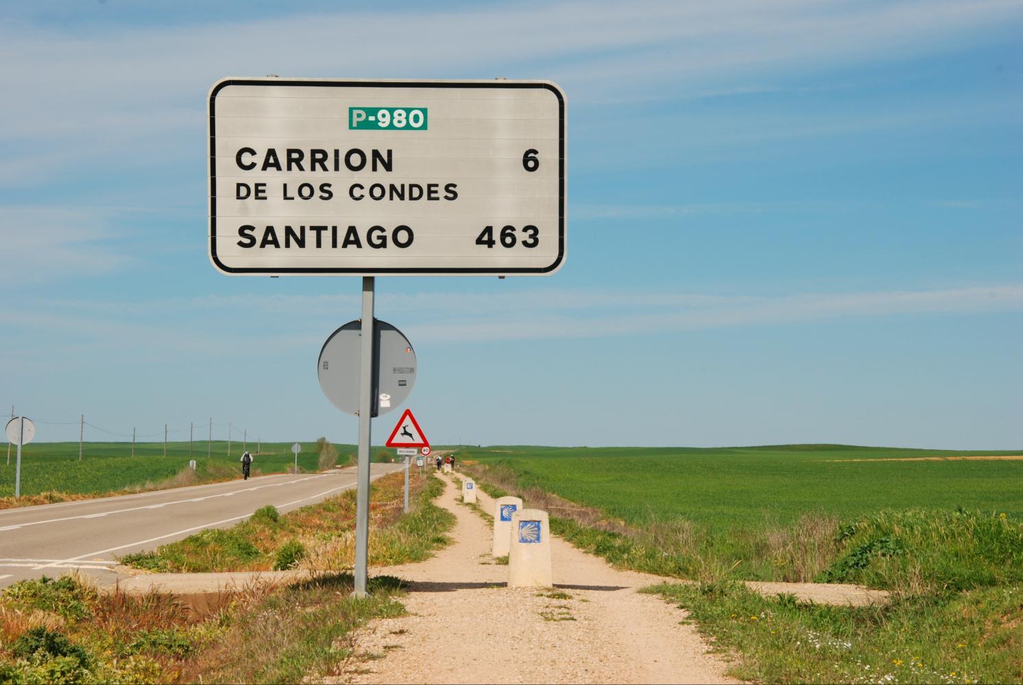 Burgos #2