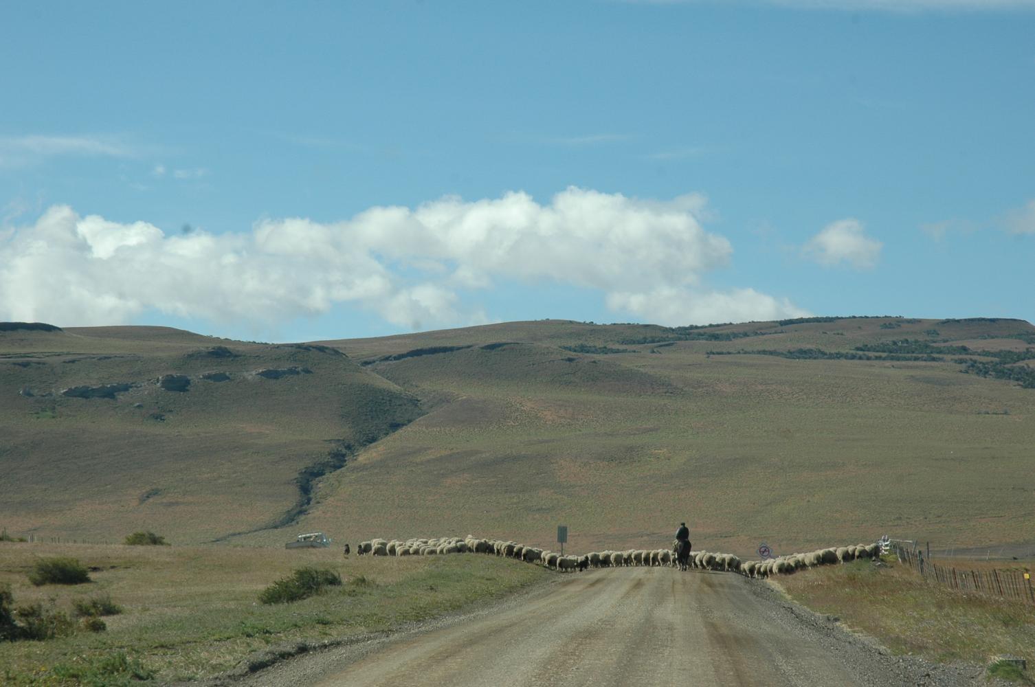 patagonie campagne rancho