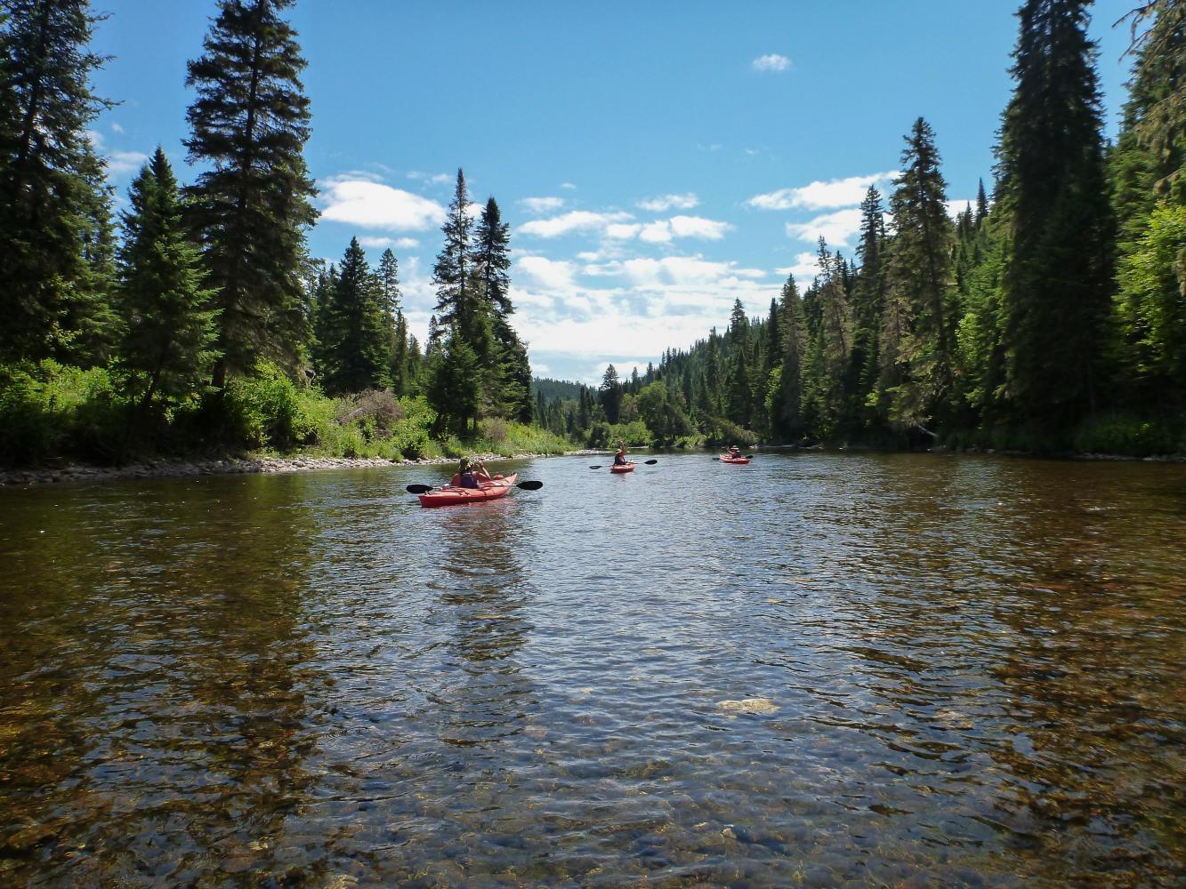 Kayak sur la Kedgwick