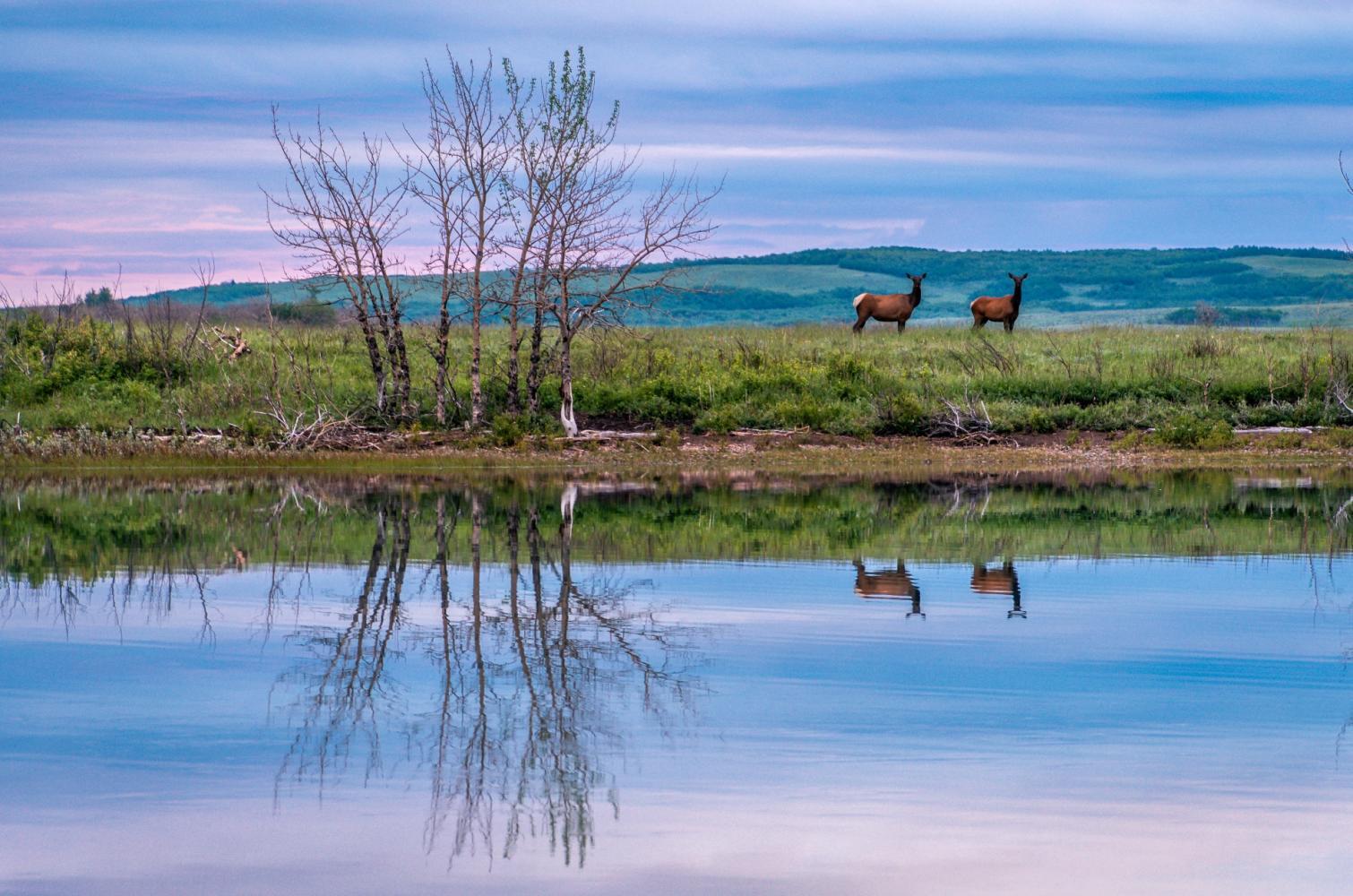 waterton lake national parc