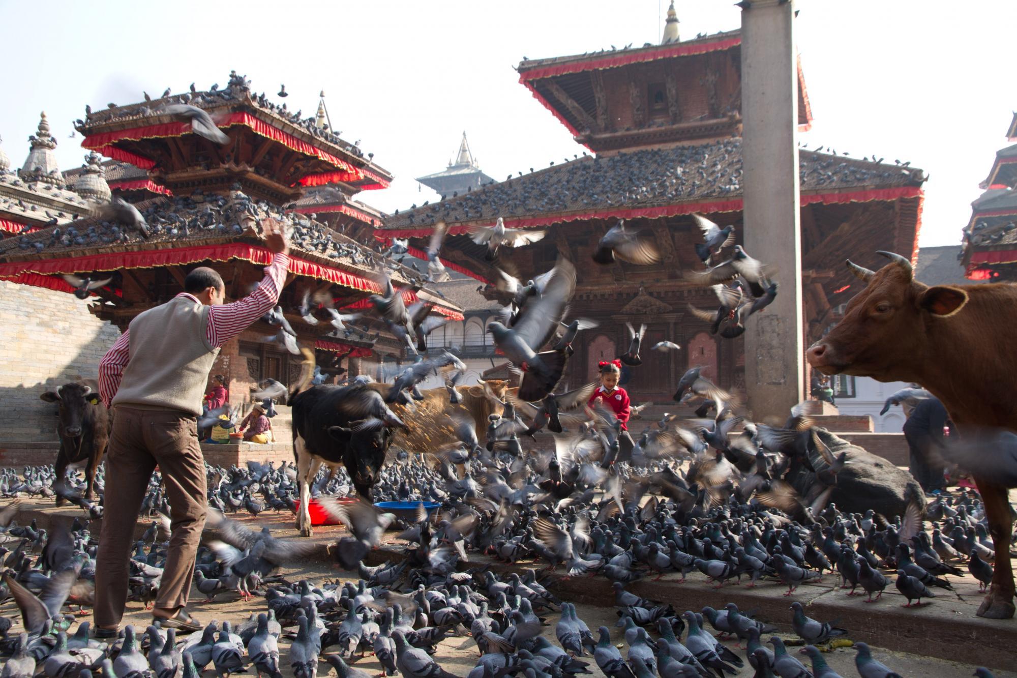 © Trek découverte culturelle Népal