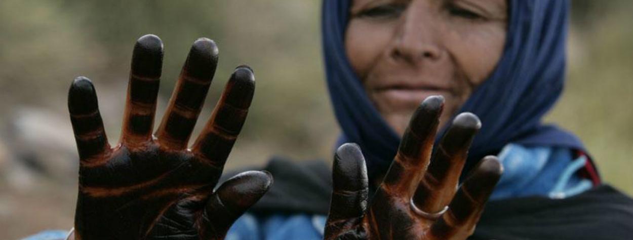 © transhumance maroc