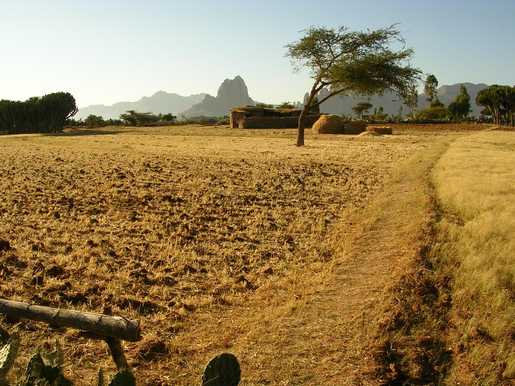 © trek en Éthiopie