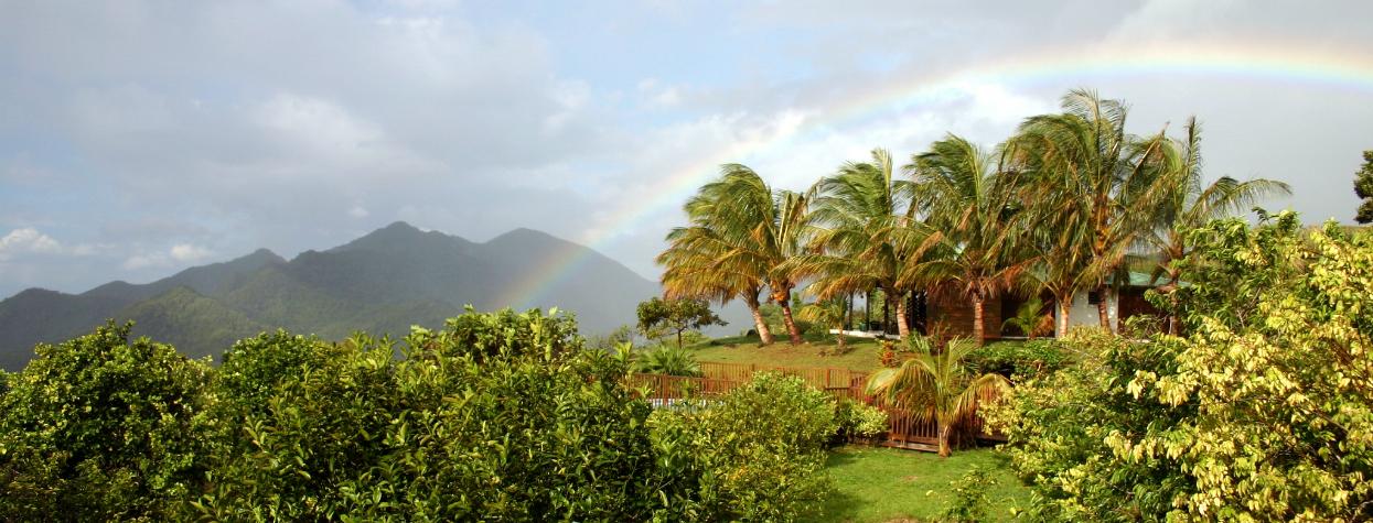 © activité en Guadeloupe