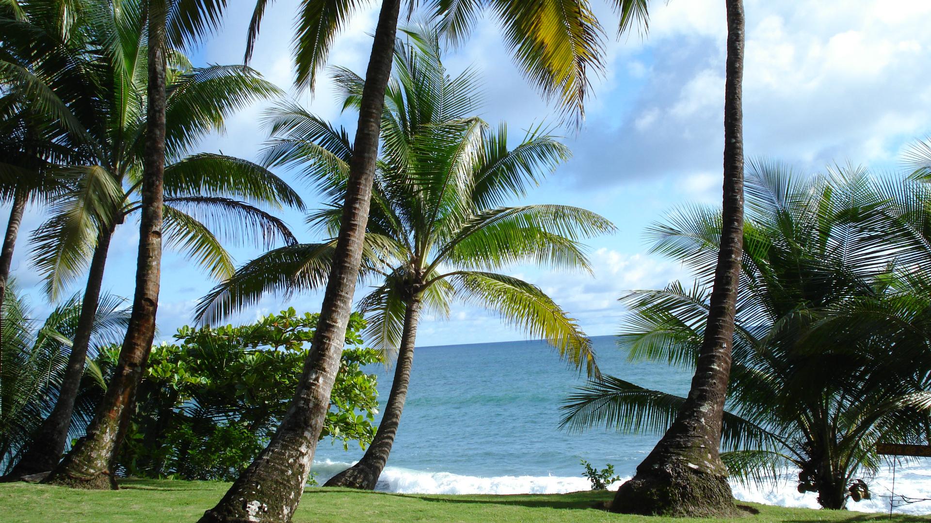 Le Costa-Rica