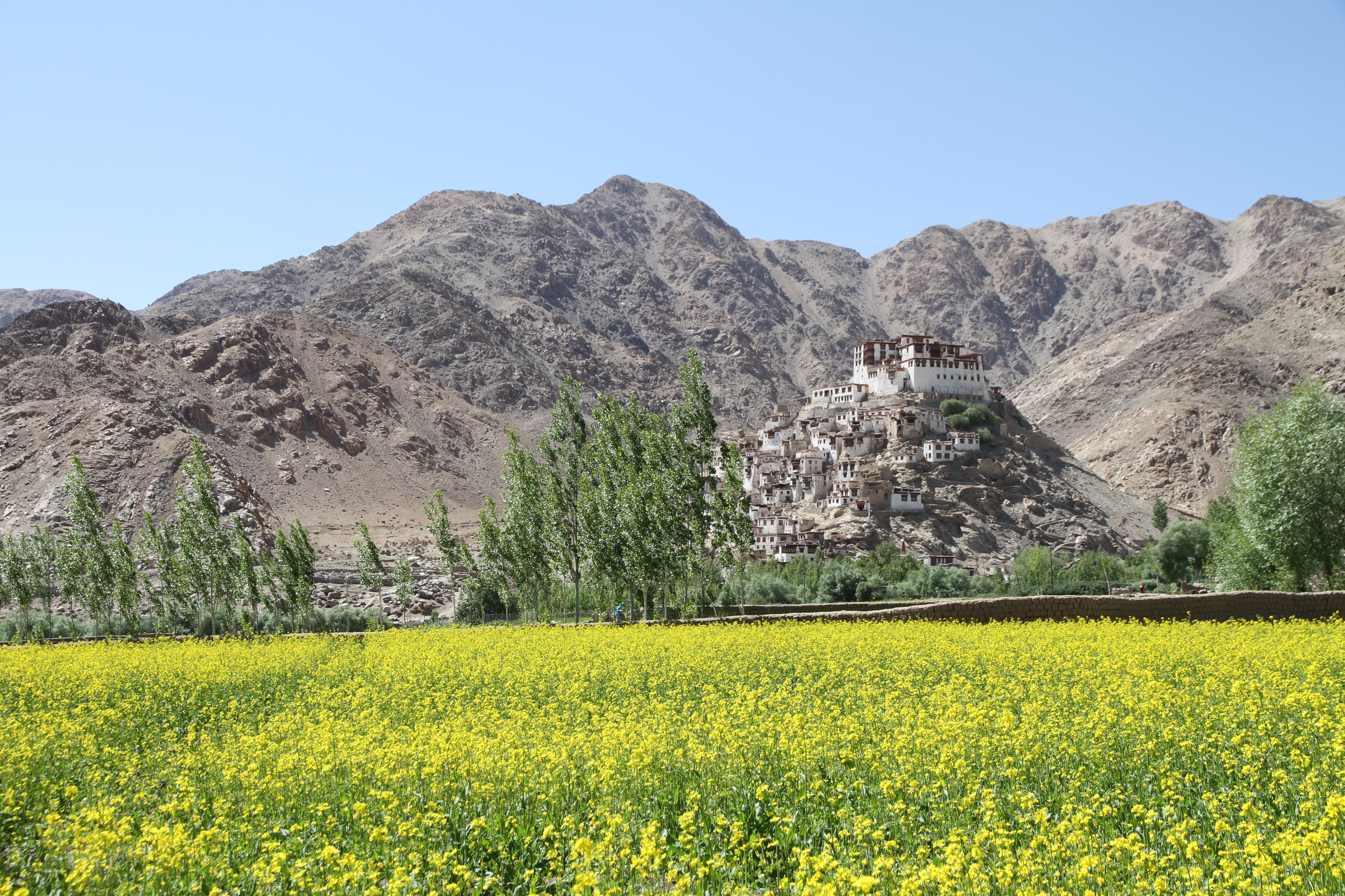 © monastères ladakhi