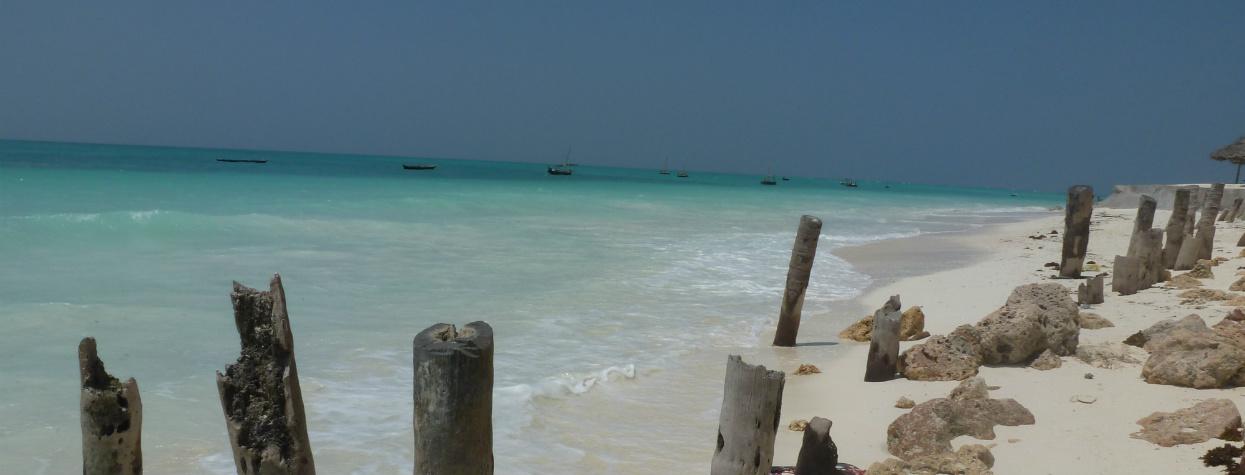 © Zanzibar