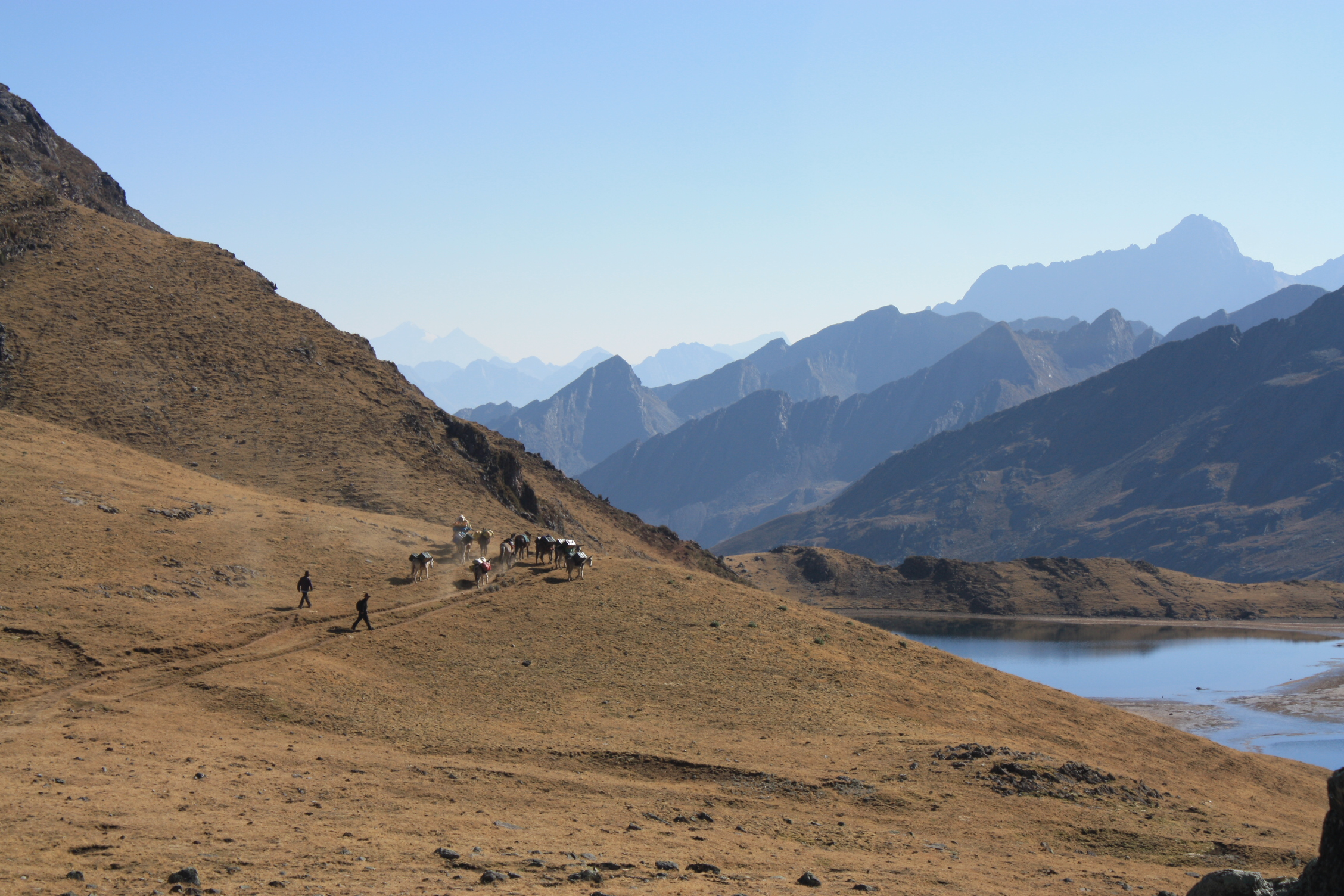 © trekking portage mules