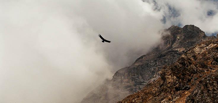 © Voyage Pérou trekking Choquequirao